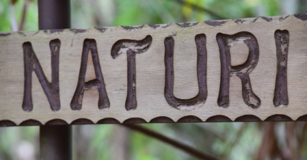 screen-shot-2017-02-03-at-6-05-56-pm
