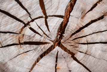 screen-shot-2017-02-04-at-6-23-43-pm