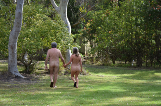 screen-shot-2017-02-04-at-6-26-42-pm